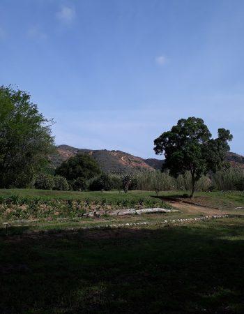 DeMist Cottages and River Camp