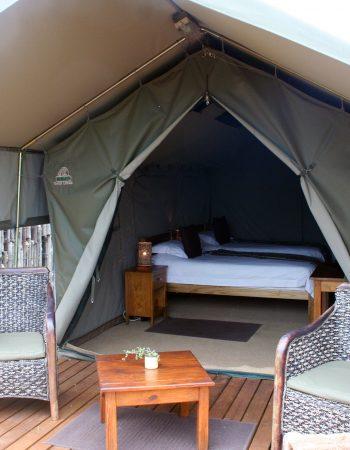 Woodbury Tented Camp – Amakhala Game Reserve