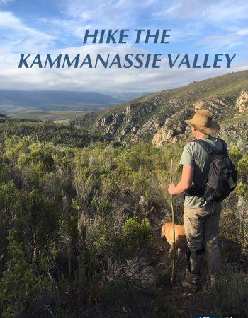 Eagle Falls Lodge and Adventures